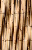 Bamboo Texture Background