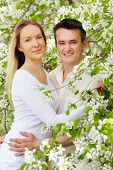 Portrait of young couple looking at camera between blooming apple-trees