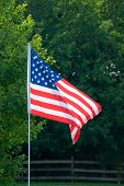 USA  Flag Waving In Breeze
