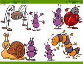 image of caterpillar cartoon  - Cartoon Illustration of Happy Insects or Bugs Set like Ant or Ladybug or Harvestman and Caterpillar - JPG