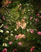 Rose Garden, 3D Cg