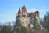stock photo of dracula  - The medieval Castle of Bran - JPG