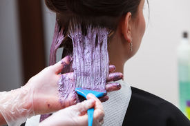 pic of hair dye  - Professional female hairdresser applying color to female customer at design hair salon woman having her hair dyed Hair dye colouring in process - JPG