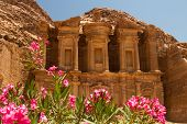 pic of camel-cart  - Oleander bush and the facade of the Monastery one of the famous monuments of the ancient Nabatean city of Petra Jordan - JPG