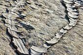 stock photo of mud  - Dried rivers of mud from Mud Volcanoes Buzau Romania  - JPG