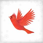 Winter Christmas Flying Bird