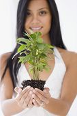 Pacific Islander woman holding plant
