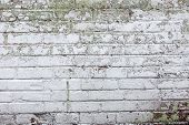 image of mortar-joint  - The old whitewashed brick wall with rich texture - JPG