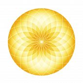picture of circle shaped  - Golden fractals in Circle - JPG