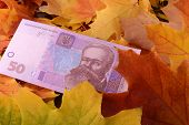 Ukrainian Hryvnya Money Banknotes On Autumn Leaves