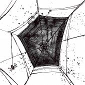 Vector Hand Pictured Grunge Spiders Web