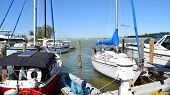 Florida Marina, Florida Keys, Feb 19 2015