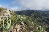Mountains On Tenerife