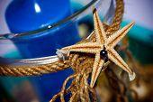 Starfish Tied