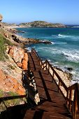 Beautiful Coastaline And Walkway In South Africa