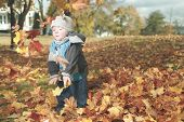 A boy in leaf. A season with full color.
