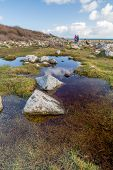 stock photo of lowlands  - Lowland point near coverack in cornwall england uk stunning coastline great for walkers - JPG