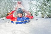 picture of snow forest  - Happy friends on snow tube in winter during day in the fir tree forest - JPG