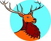 Red Stag Deer Head Circle Cartoon