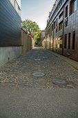 Kaunas City's Street