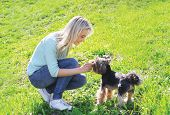 image of yorkshire terrier  - Woman owner with yorkshire terrier dog having fun on the grass - JPG