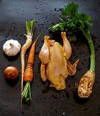picture of celery  - Chicken - JPG