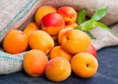 stock photo of apricot  - fresh apricots on burlap sack on wood - JPG