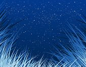 Editable vector background of grass and stars as separate object
