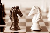 Head to head - knights on a chess board, in sepia tone.   Shallow depth of field.