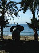 Elefante na praia com palmeiras