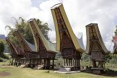 picture of funeral home  - five typical Toraja houses coltetto which stretches to the sky in sulawesi island - JPG