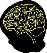 Brain Connetion