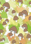 Autumn leaves and mushrooms