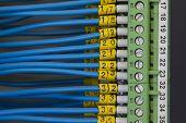 Electrical Signaling Wiring