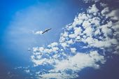 Beautiful Seagull Soar In The Bright Summer Blue Sky. One Seabird At The Clean Sky Background, Symbo poster