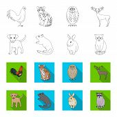 Puppy, Rodent, Rabbit And Other Animal Species.animals Set Collection Icons In Outline, Flat Style V poster
