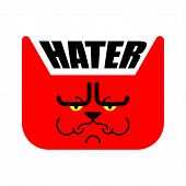 Hater Grumpy Cat. Angry Pet. Vector Illustration poster