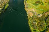 Belarus. Flock Of Heron Birds Flying Above Sozh River. Aerial View Landscape In Sunny Summer Day. To poster