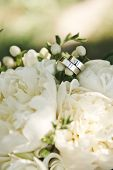 Wedding Rings On A Bouquet Of White Flowers. Wedding Rings On A Bouquet. White Bridal Bouquet. White poster