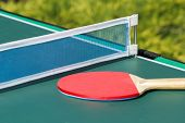 Small Child Table Tennis