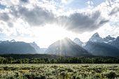 Mount Moran Covers Sun Burst In Wyoming Wilderness In Summer poster