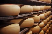 Photo of a cheese factory
