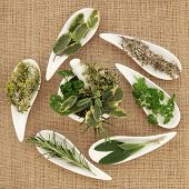 Herb leaf sprigs pf parsley, sage, rosemary and thyme  in white porcelain dishes and a mortar with p