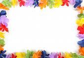 hawaiian fake flower frame