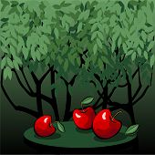 Tasty Red Apples In The Mystic Garden
