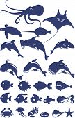 Vector collection of fish and sea animals