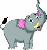 picture of tusks  - Vector illustration of Cute elephant cartoon isolated on white background - JPG