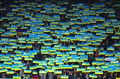 Ukraine National Football Team Supporters Show Their Support