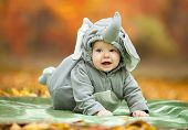 Baby boy dressed in elephant costume in park