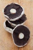 Pile Of Portobello Mushrooms